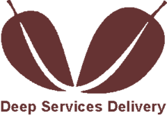 Deep Services Delivery
