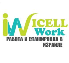 ICELLWORK